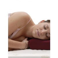 Sleep Away Pillow Memory in Poly Cotton Slip
